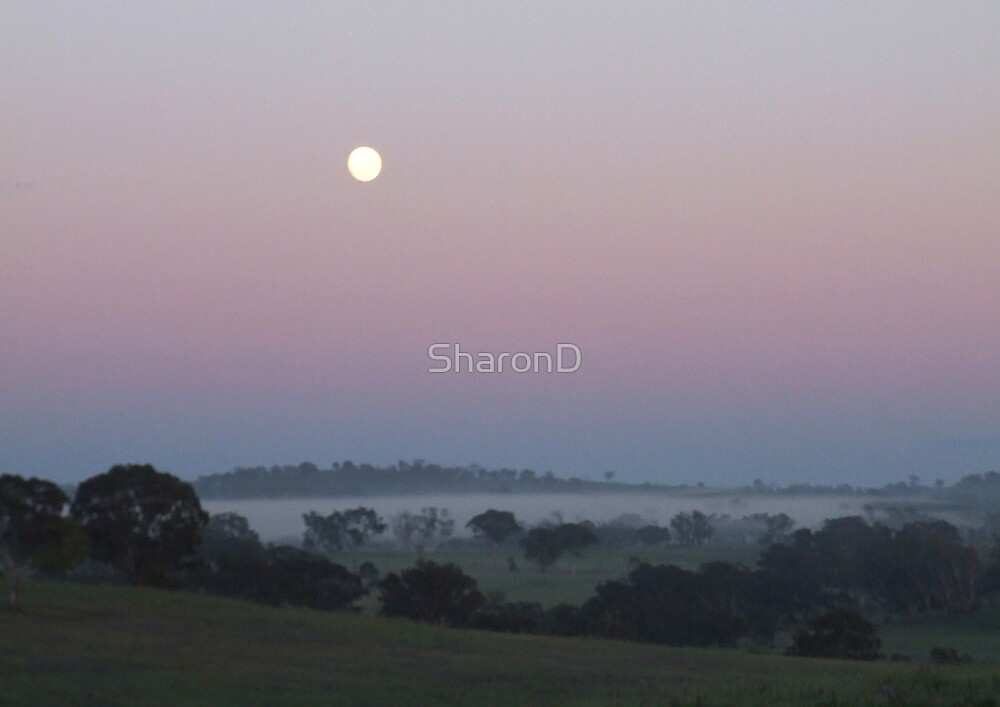 Mooning Sunrise by SharonD