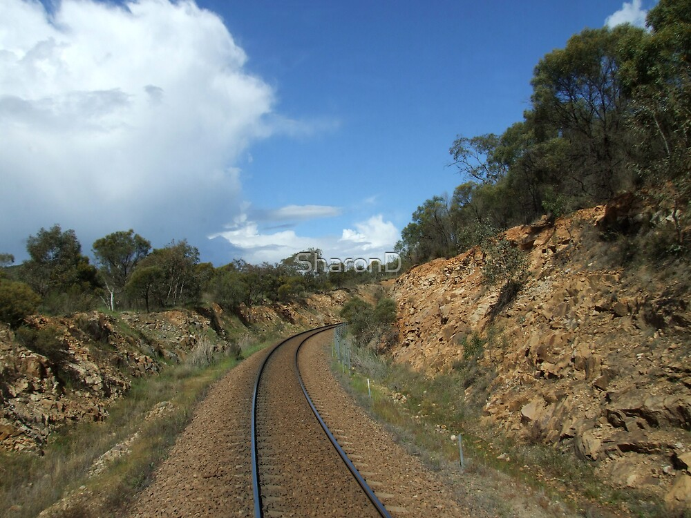 View from the Railmotor - 5 by SharonD