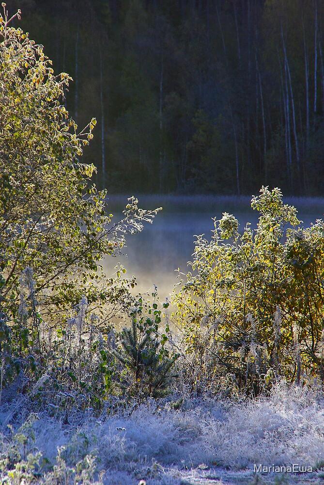 Autumn Mist by MarianaEwa