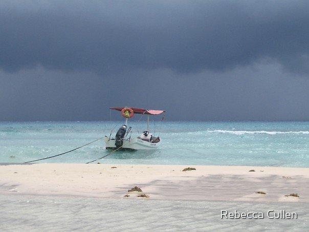 Playa Del Carmen, Tropical Storm Stan by Rebecca Cullen