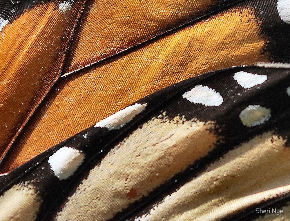 Monarch by Sheri Nye