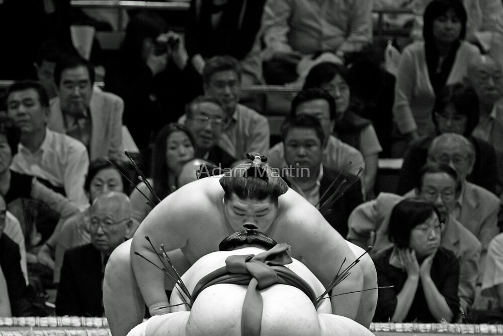 Sumo Psyche Out by Adam Martin