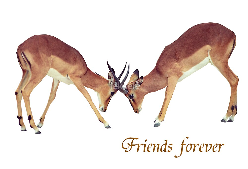Friends forever card by leksele