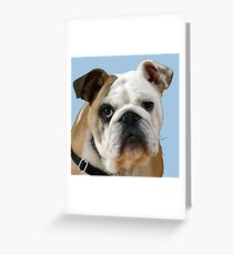 American Bulldog Background Removed Greeting Card