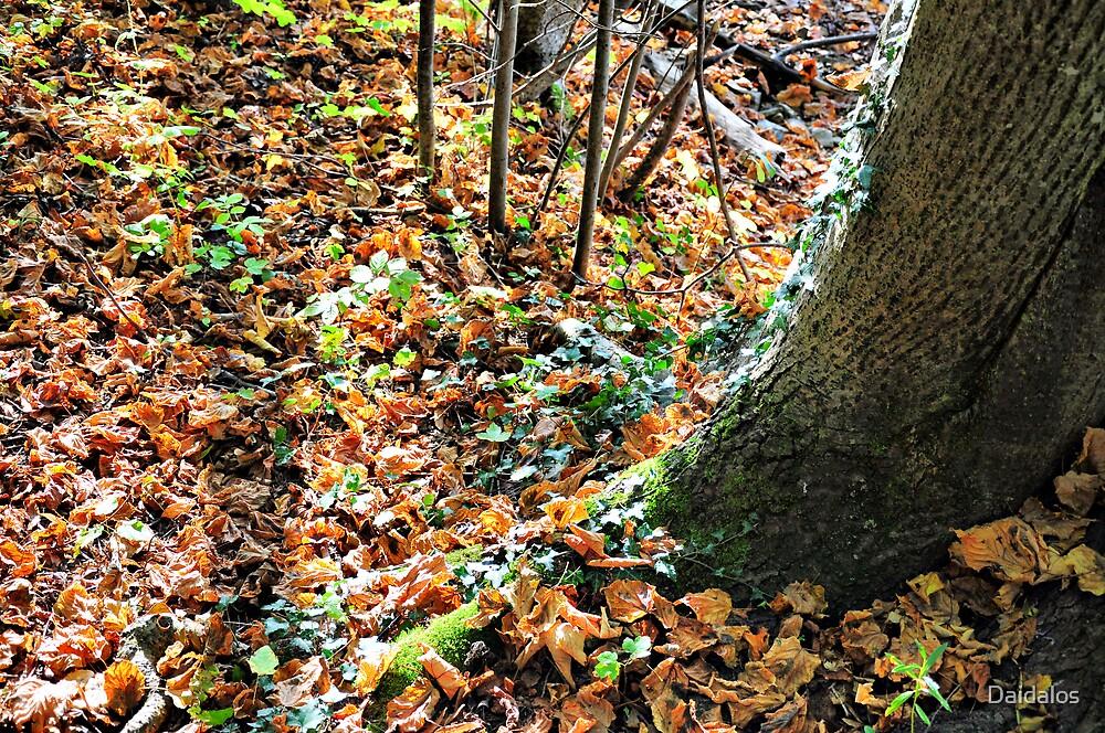 Fall I by Daidalos