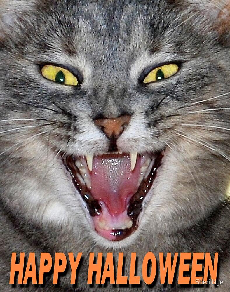 Halloween Cat by Sheri Nye