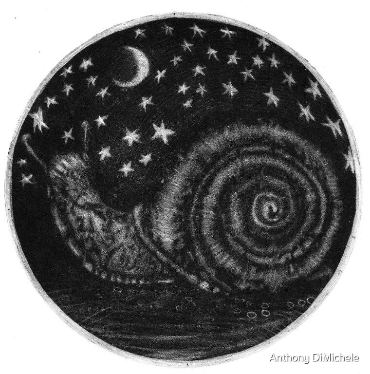 Escargot contemplating the cosmos by Anthony DiMichele