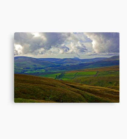 In The Dales Canvas Print