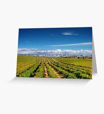 Mclean Vineyard Greeting Card