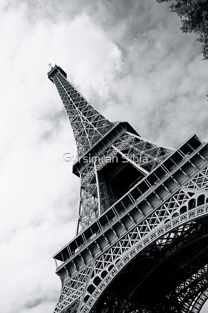 Magnificent Eiffel by Gursimran Sibia