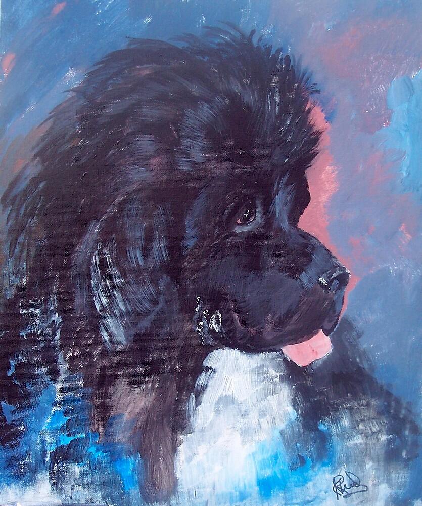 Portrait of Feeny, the Newfoundland Dog by IowaArtist