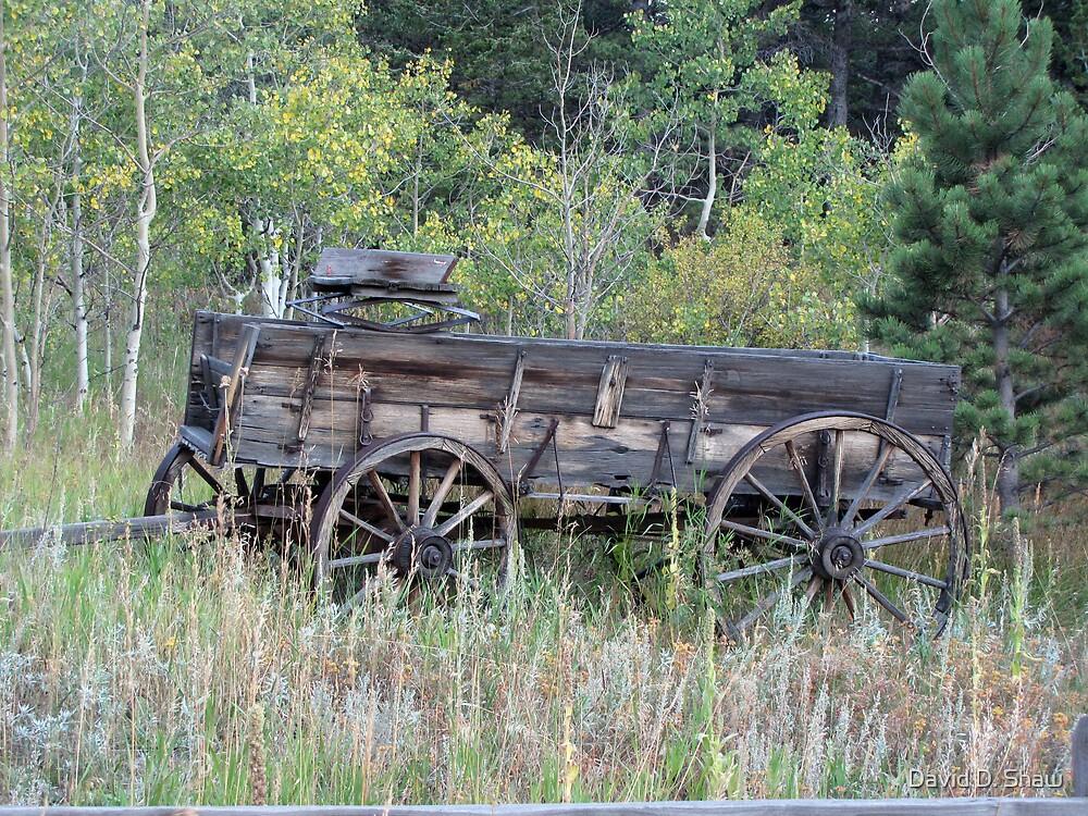 Old Wagon by David Shaw