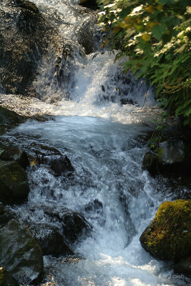 Wahkeena Falls by Loisb
