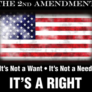 2nd Amendment - Not a Need, It's a Right! by MDBMerch