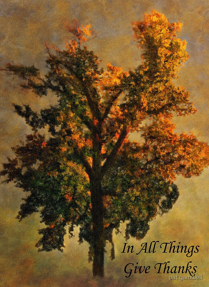 In All Things Give Thanks (CARD) by pat gamwell