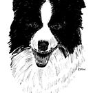 Border Collie by EuniceWilkie