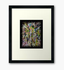 Synaesthesia Framed Print