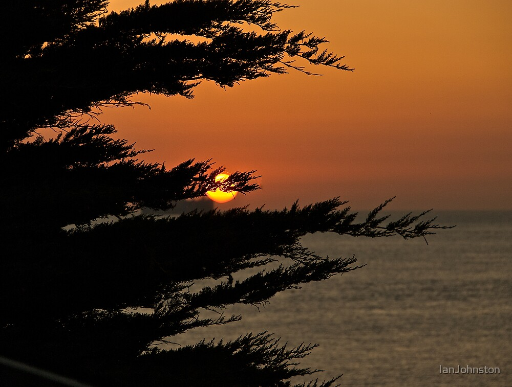 Sunrise through the trees by IanJohnston