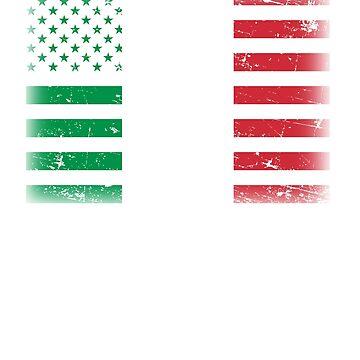 Italian American Flag by dmanalili