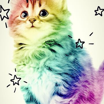 Unicorn Kitten by Claire-C
