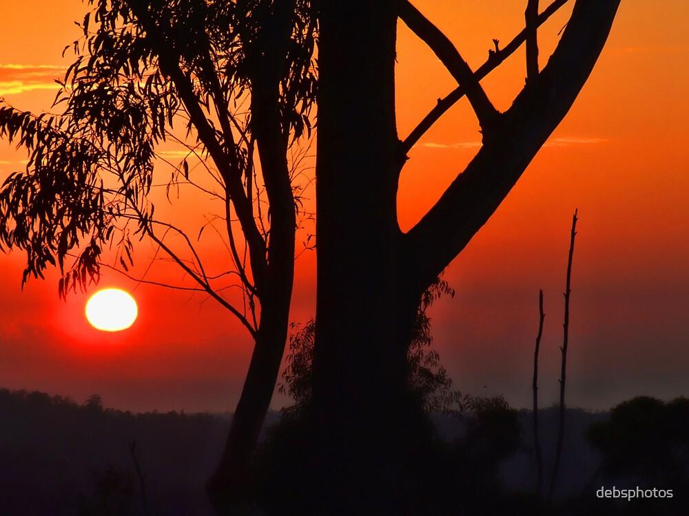 """Sunrise"" by debsphotos"