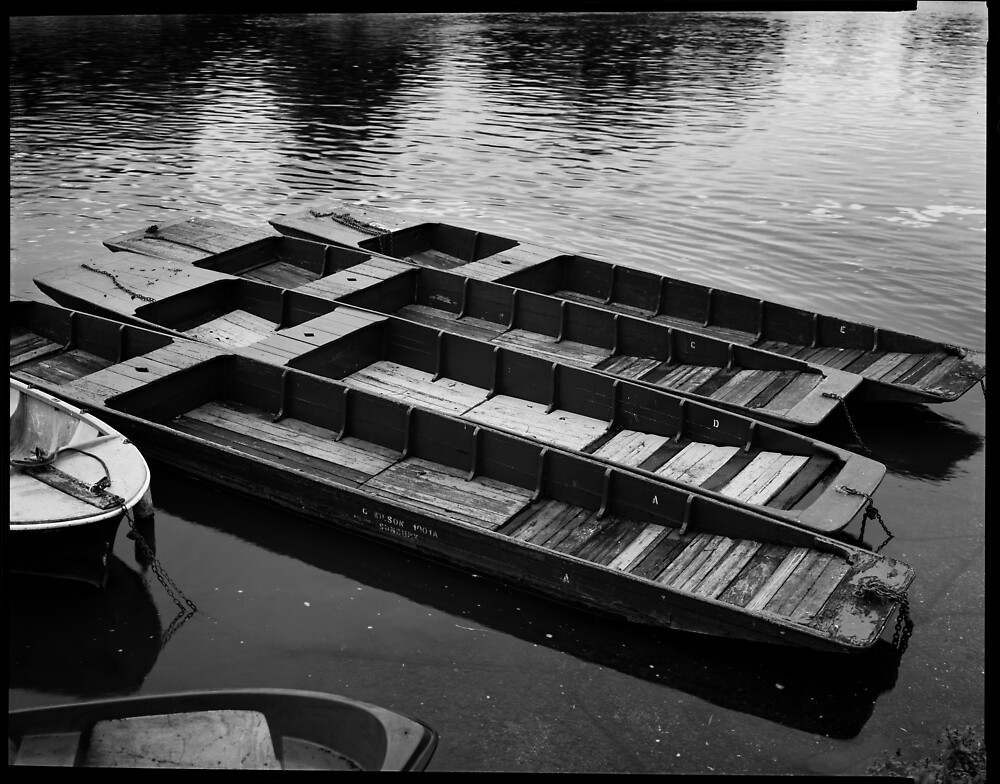 Punts on the Thames, Sunbury. by largeformat