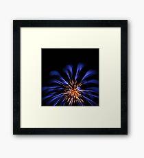Blue Fire Flower Framed Print