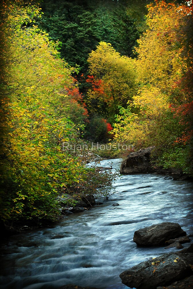 American Fork River - Curves by Ryan Houston