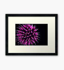 Purple Porcupine Framed Print
