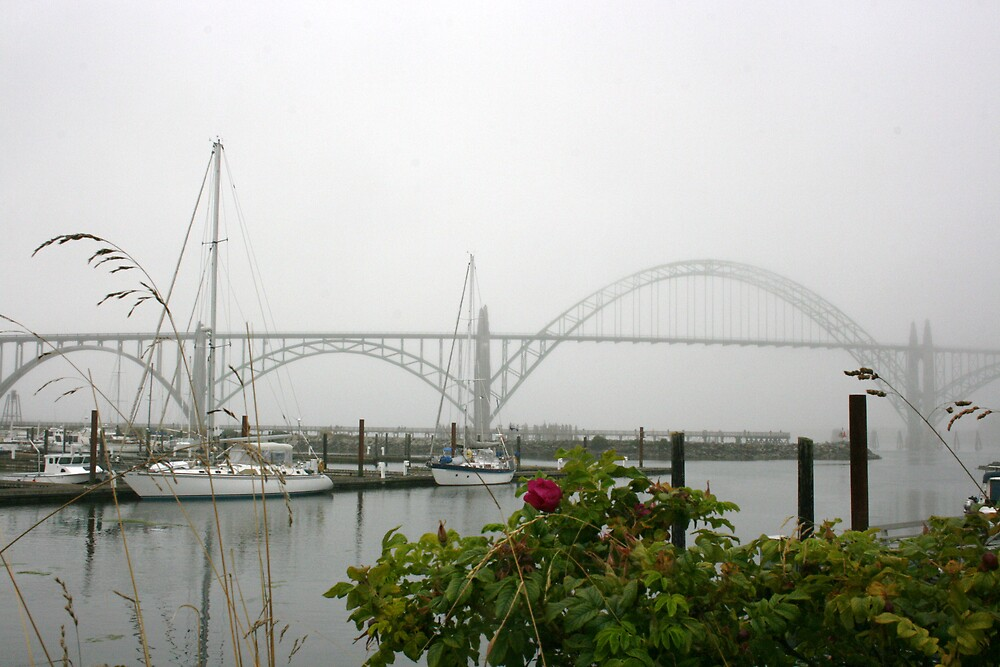 Yaquina bay bridge by RobertW3