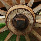 Wooden Wheel by Barbara Morrison