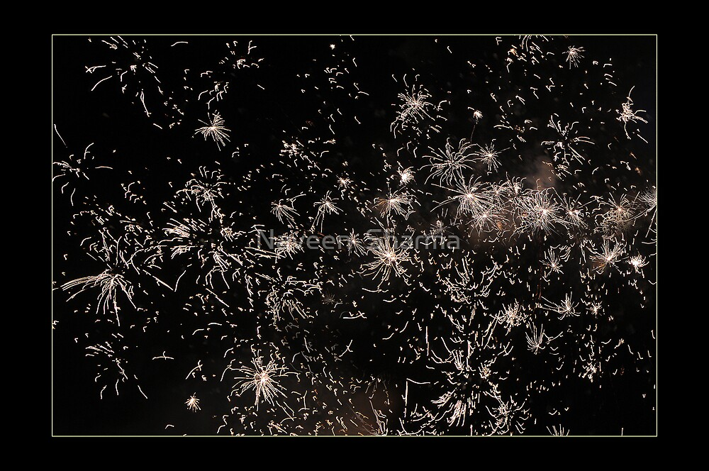 Firework by Naveen  Sharma
