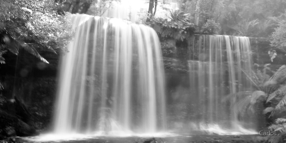 Russell Falls by Carlos .