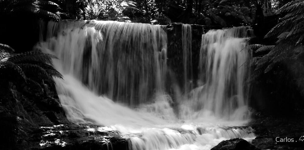 Horseshoe Falls 3 by Carlos .