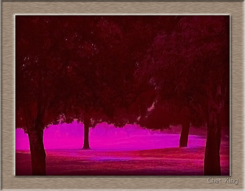 Magenta Wood by Chet  King