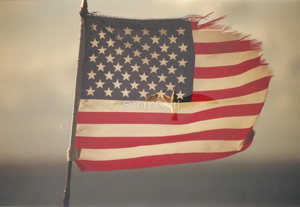 Patriotic by Scott Curti