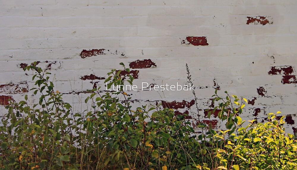 painted brick wall by Lynne Prestebak