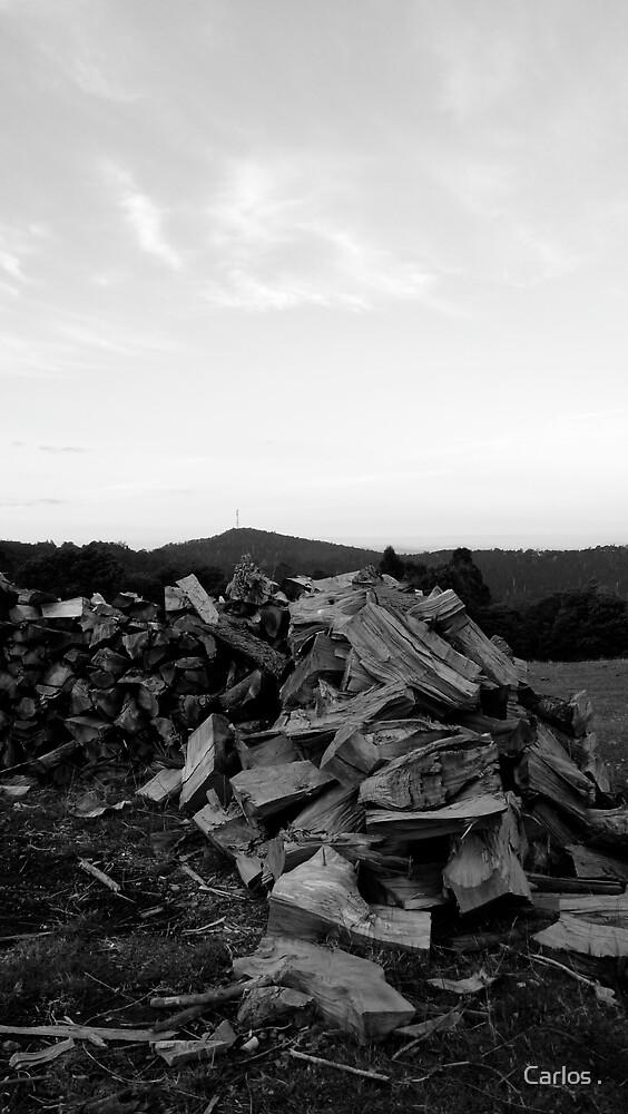 woodpile 2 by Carlos .