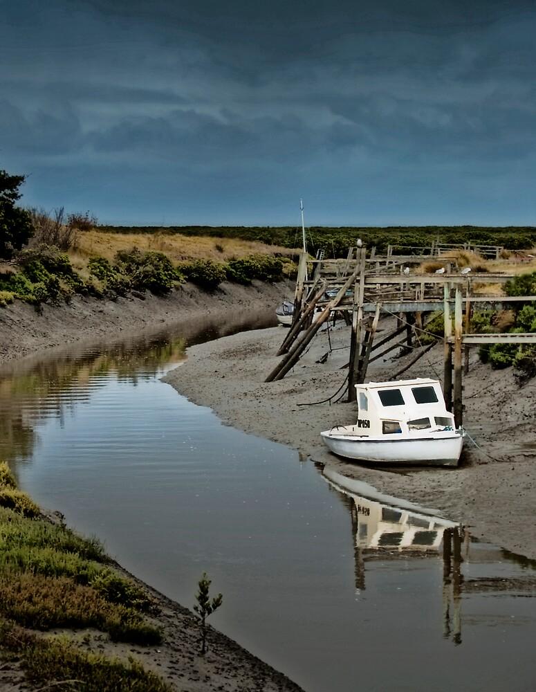 Up the creek by Jurgen  Schulz