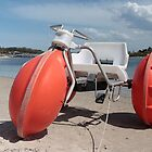 Water Bike Forster 01 by kevin Chippindall