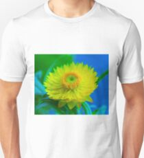 Fuzzy Yellow T-Shirt