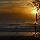 Sunrise at Yamba by myraj