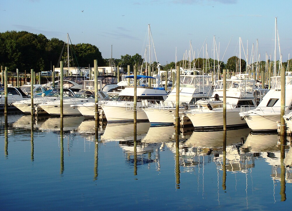 Local Marina by bam246
