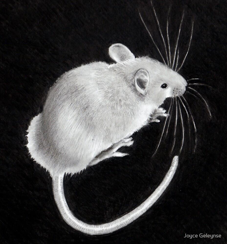Little Mouse by Joyce Geleynse