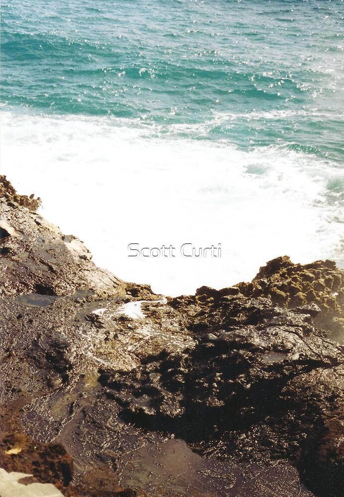 sooo pretty! by Scott Curti