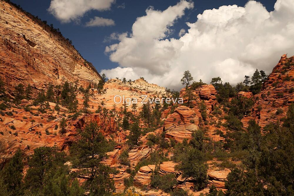 Sandstone Formations, Zion National Park by Olga Zvereva