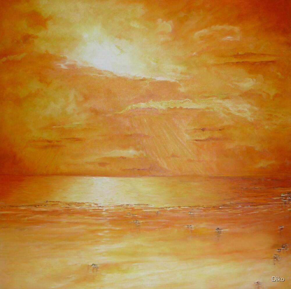 Indian Ocean Sunset by Diko