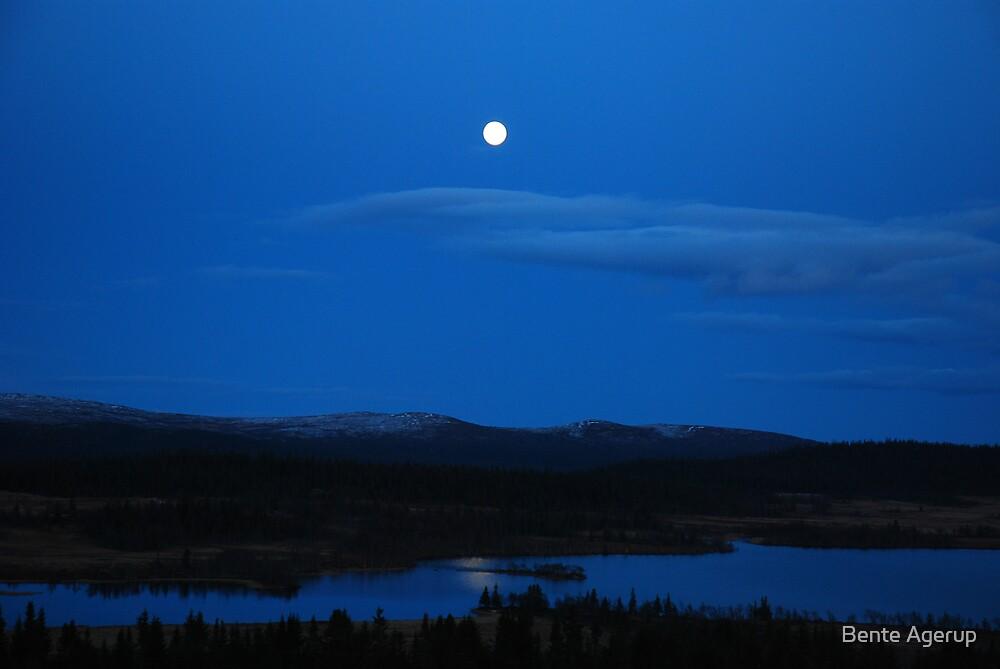 Hornsjøen by night by Bente Agerup