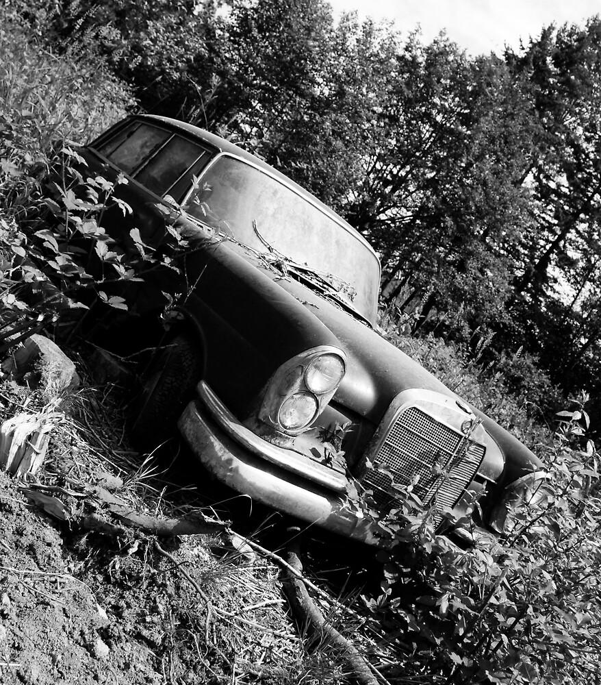 Old Benz by Mario Alleyne