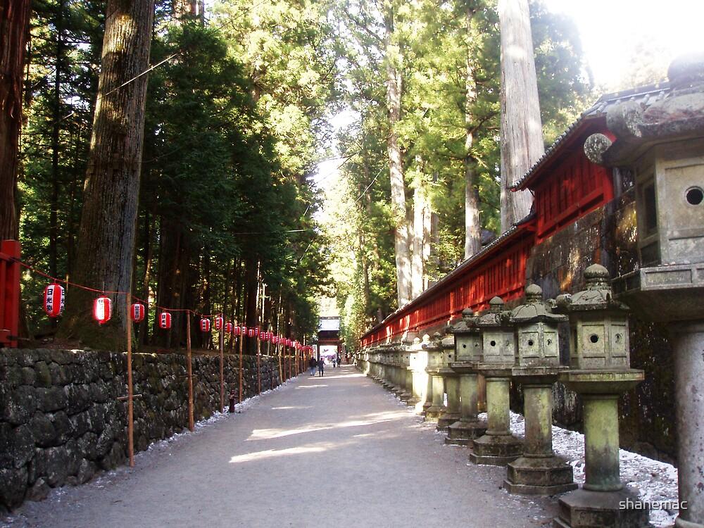 Nikko by shanemac